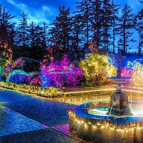 37 best holiday lights at shore acres images on pinterest