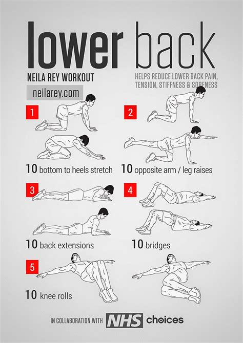 Safe Exercises For Lower Back Best Lower Back Stretches Tfe Times