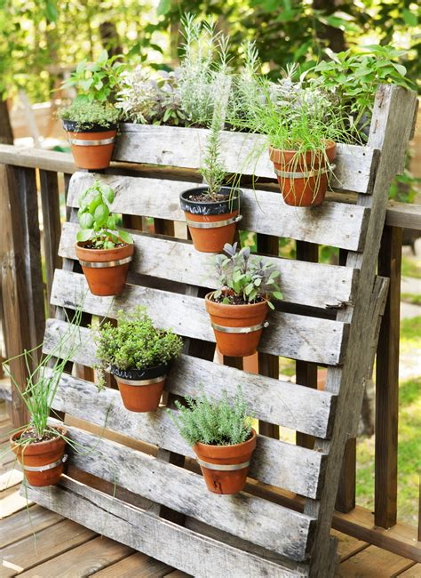 Small Garden Plant Ideas 12 Easy Container Garden Ideas For Every Outdoor Space Small Plants Flowering Plants And Palm