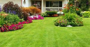 beautiful gardening front yard views with green grass and flowers plants with home landscaping