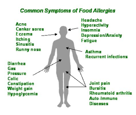 food allergy symptoms seed to feed me what is the difference between a food intolerance and a food allergy