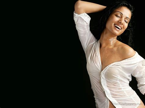 celebrity pics bollywood hot bollywood celebrity wallpapers hot bollywood actress