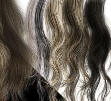 hair psd download 12 hair for photoshop psd files images studio background