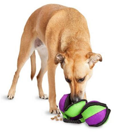 how to stop food aggression in puppies how to stop food aggression in dogs baxterboo