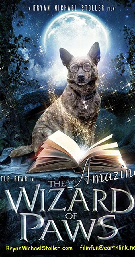 299545 the amazing wizard of paws the amazing wizard of paws video 2015 imdb