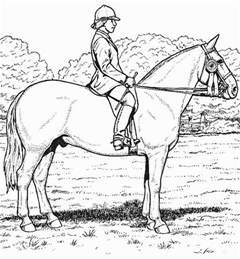 coloring pages of real horses realistic coloring pages bestofcoloring