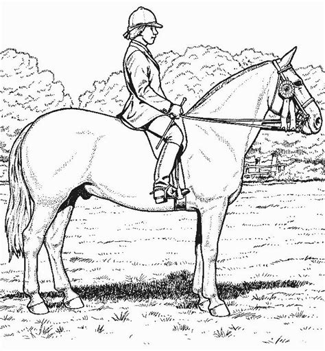 coloring pages of horses realistic realistic horse coloring pages bestofcoloring com