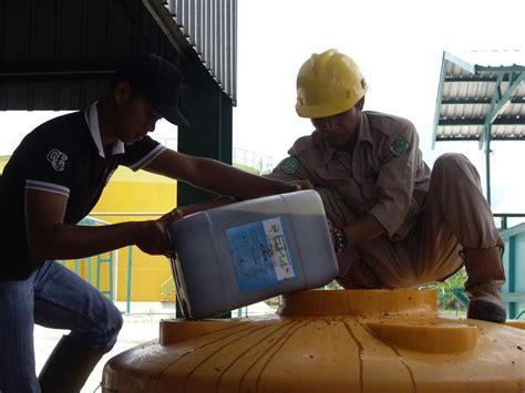 Pupuk Kandang Sapi Untuk Kelapa Sawit em4 untuk kelapa sawit emindonesia