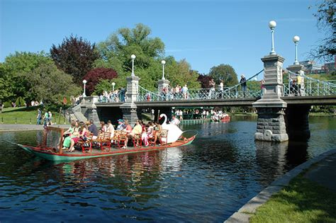 swan boats boston public garden top 10 outdoor activities in boston