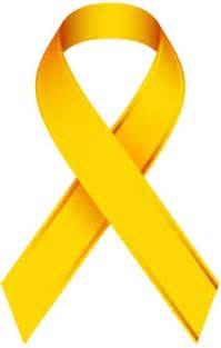 childhood cancer color best 25 childhood cancer ribbon ideas on
