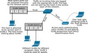 vlan tutorial with comparing lan vlan and trunk port