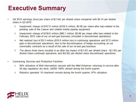 business excutive summary schreurs project