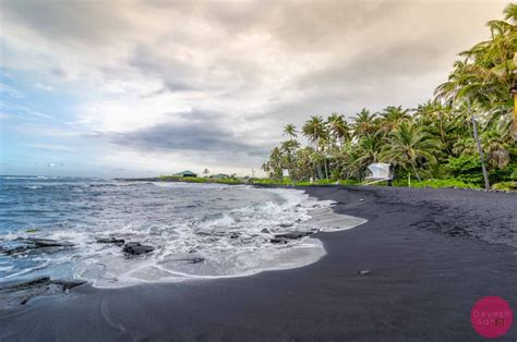 black beaches punaluu black sand beach hawaii turtles black sand