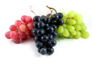 uva le uva tutte le propriet 224 racchiuse in un acino