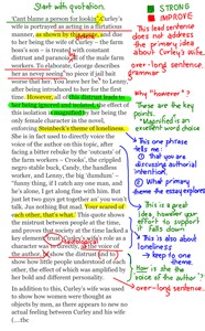 annotated essay exle of mice and character paragraphs annotated drafts edutronic year 11 2014