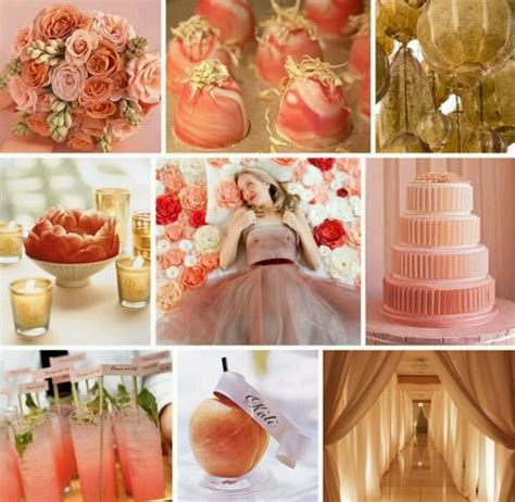 colour themes peach 153 best images about blush dusty rose peach cream and
