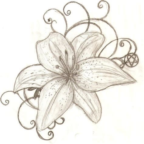 small tiger lily tattoo free drawings wow image results p