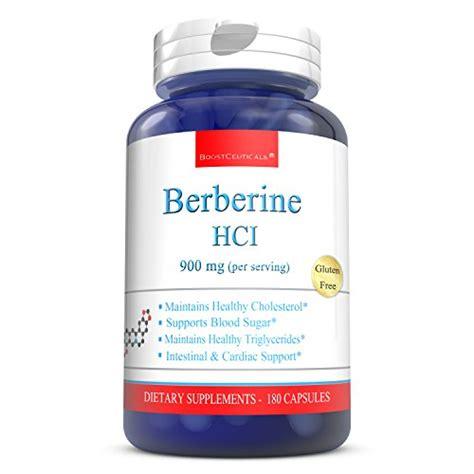 supplement berberine berberine supplement 900mg 180 count berberine hcl