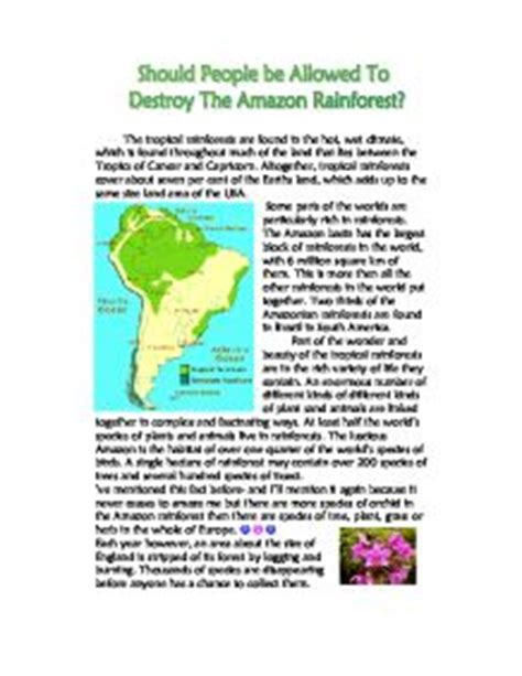 Of The Rainforest Essay by Save The Rainforest Essay Facebookthesis Web Fc2