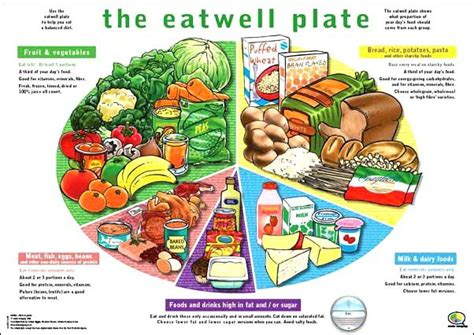 healthy diet diagram 5 food groups search food inquiry