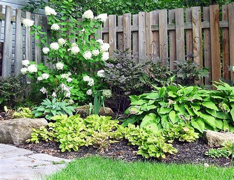 Rock Garden Plants For Shade Shady Garden With Rock Shade Loving Plants And Gardens Pinterest