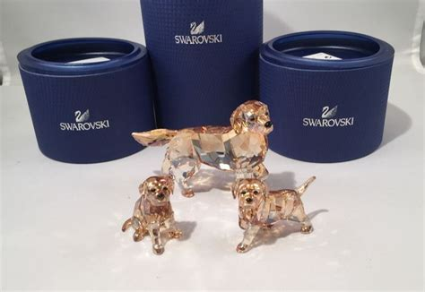 swarovski golden retriever sitting swarovski golden retriever golden retriever puppy sitting golden
