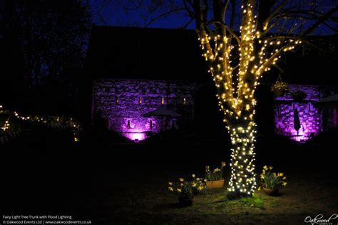 installation of fairy lights in trees lights hire oakwood events