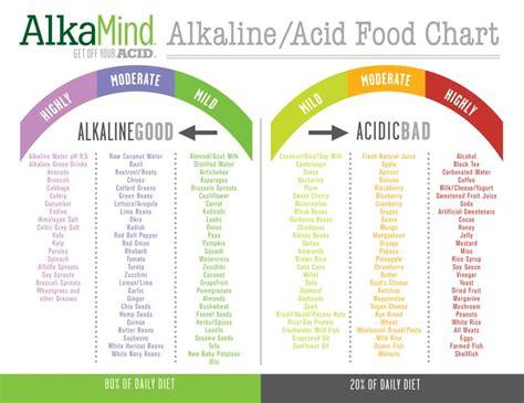 best alkaline food 25 best ideas about acidic foods on acidic