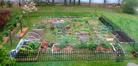 Backyard Vegetable Garden With Shed Large Metal Fences Large Vegetable Garden Layout