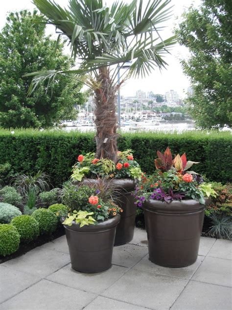 modern tropical patio garden tropical landscape