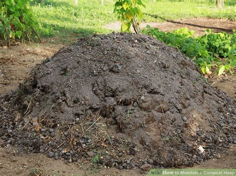 how to maintain a compost heap 8 steps with pictures wikihow