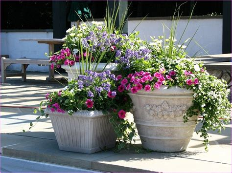 big flower pots and how to plan for the plants to plant in