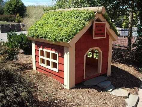dog house interior the most adorable dog houses ever some of them you can buy online adorable home