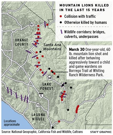california deer kill map mountain lions in southern california the best of 2018