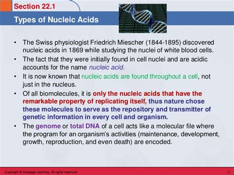 Nucleic Acids And Protein Synthesis Section 7 3 by Chem 45 Biochemistry Stoker Chapter 22 Nucleic Acids