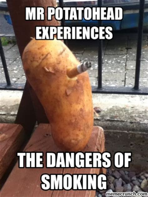 Potatoes Meme - potato head meme google search vegetables pinterest