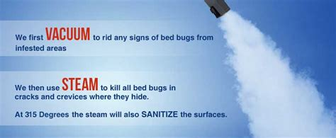 bed bug exterminator denver bed bug exterminator denver denver bed bug exterminator
