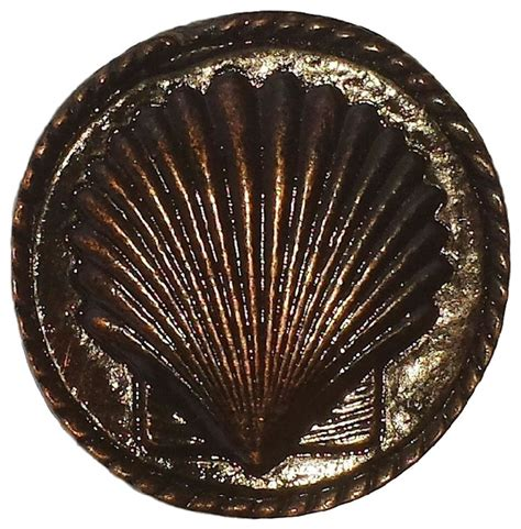 Seashell Door Knobs by Sea Shell Cabinet Knob Antique Brass Small Antique