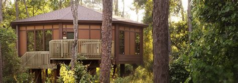 disney saratoga springs treehouse villas floor plan saratoga springs treehouse villas floor plan springs home