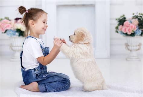 best friend pet child s best friend prefer their pets siblings
