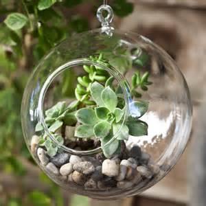 hanging terrariums decorative glass terrarium glass globes for plants