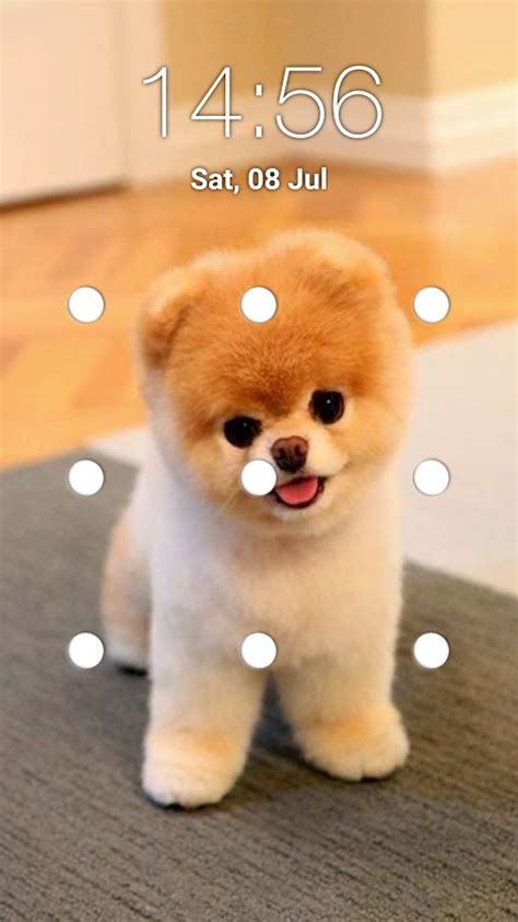 puppy screen puppy pattern lock screen android apps on play