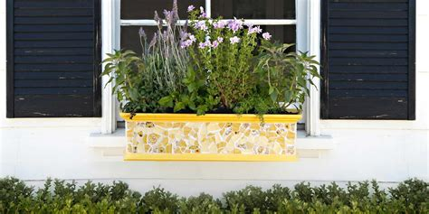 Window Planter Box Ideas by 18 Gardening Ideas For Your Window Boxes Window Box