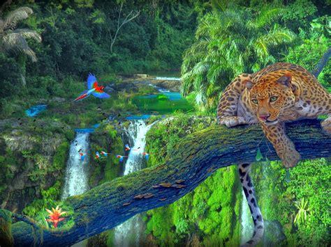 imagenes impresionantes del mundo hd mejores imagenes del mundo hd imagui