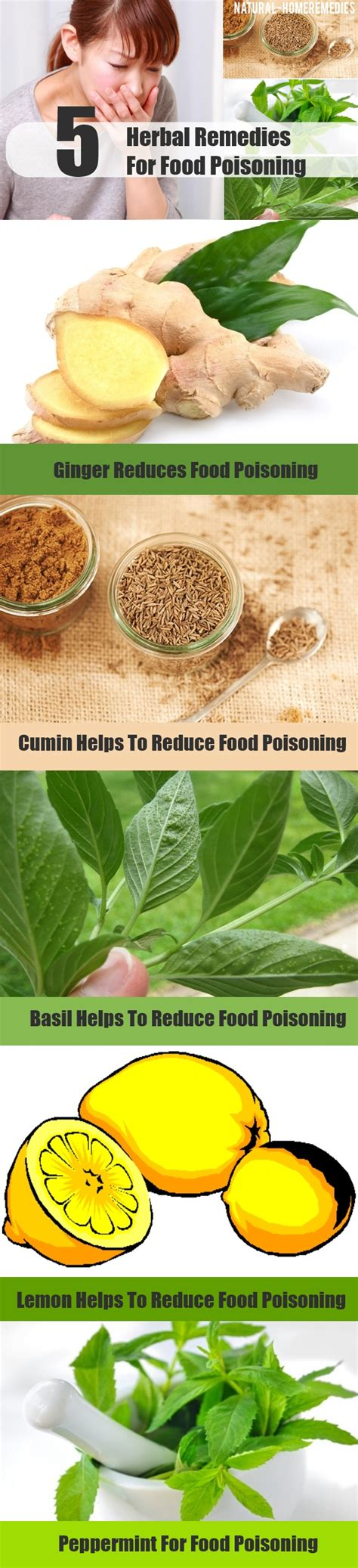 5 great herbal remedies for food poisoning how to treat