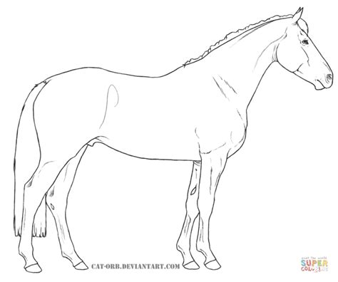 american paint horse coloring page free printable