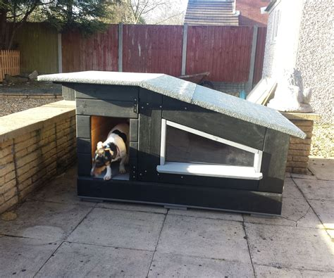 luxury pallet kennel  sun deck  steps  pictures
