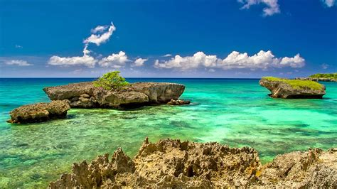 amazing caribbean nature 4k wallpaper free 4k wallpaper