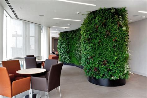 images  green walls  offices office landscapes