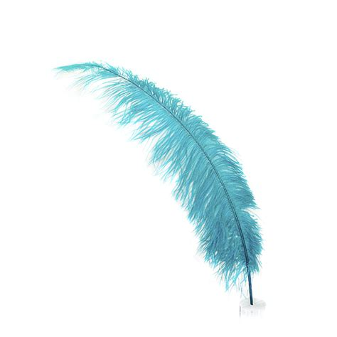 www feather ostrich feather spads large